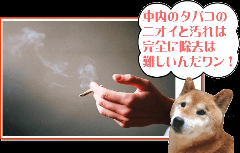 タバコのニオイは完全に除去するのは難しいんだワン